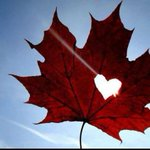 1 of the better pics Ive seen today. A fitting way to end an emotional day. Good night #Ottawa. Canada #United http://t.co/LFLvJt6YdB