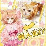 現実のネコちゃんをカメラで撮ると……え、擬人化!? 猫耳なでなでRPGアプリ「猫耳さばいばー!」配信決定 - ねとらぼ http://t.co/4FwNkI9yR8 @itm_nlabから http://t.co/9pUONrdLbu