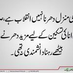 RT @Usmani111: #HazaraStandsWithPAT #InqilabInAbbottabad People in Hazara have endorsed and support #DrQadri decision #Pakistan http://t.co/GQtStfBmDA