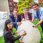 #Birmingham to become virtual aviary next year @thebighoot2015 #TheBigHoot2015 http://t.co/BPkzTr4kqy http://t.co/n7XOGkxdLE