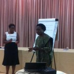 Dr Olive presenting on how we can strengthen Maternal and Newborn champions. #Champ4NewBorns http://t.co/g87imMJSO1
