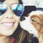 """""""@refugioescuela: Nina mejor cada día y Bentley no tiene ébola. Ellos sí podrán reencontrarse http://t.co/E2gyeCwVFR http://t.co/waFNUXqQeN"""""""