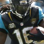 RT @Jaguars: Its the last day to vote @DenardX for @FedEx Ground @nfl Player of the Week: http://t.co/l8PFqK8olP #airandground http://t.co/6TP9ftHNee