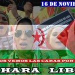 Como cada año, el próximo 16 de Noviembre: Manifestación estatal en Madrid por un sahara libre. No les dejemos solos! http://t.co/nXlFifWjyZ