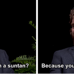 "RT @BuzzFeed: ""Between Two Ferns"" with Brad Pitt http://t.co/WlTcFbCQrk http://t.co/FlFNGbpVTc"