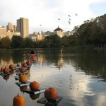 Will you go see the Pumpkin Float in Central Park #NYC this weekend? Pic via @NYCParks http://t.co/eH4GsPwLR0