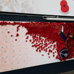 RT @SpursOfficial: As part of the Clubs support for @PoppyLegion weve launched our own poppy wall for fans to remember fallen heroes. http://t.co/pwur9FTVpE