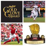 RT @Cardinals: Congratulations to @Yadimolina04 & @UncleCharlie50, finalists for #RawlingsGoldGlove awards in the National League. http://t.co/5xFKAa6o2j