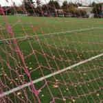 RT @SNHUFieldOps: New pink nets are on the field for the upcoming breast cancer awareness game #SNHU #Penmen http://t.co/EKz5Sqcg0E