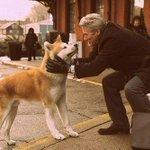 Vivimos en un mundo, donde se puede confiar mas en una mascota, que en un ser humano. http://t.co/dMqhSYSrQj