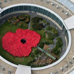 Its amazing what you can do with 1400 people in red ponchos, all for the poppy appeal http://t.co/wktgtt3Jjd http://t.co/N917cU1DnA