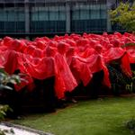RT @BBCGlos: GCHQ staff have joined forces with the Royal British Legion to create a huge poppy to launch this years appeal. http://t.co/UOUGaGNTsr