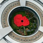 VIDEO: Watch staff at GCHQ launch @PoppyLegion appeal with a giant poppy they made themselves. http://t.co/U8VMExKyA1 http://t.co/4pFziqrH9i