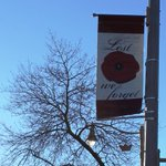 RT @DowntownGuelph: Our annual poppy banners for Remembrance Day were hung last night. Art by @CaiSepulis, beautiful & heartening to see. http://t.co/X91FqQ0Gu7