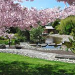 Miyazu gardens named after #gigatownnsn sister city in Japan We could communicate faster with Giga Fibre http://t.co/qXaZ0Tfuux