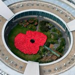 RT @Independent: GCHQ spies in red rain ponchos create giant poppy ahead of Remembrance Day http://t.co/OmzGMaw3Kc http://t.co/TkJx11VE1n