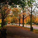 Greenwich park looking very autumnal #Greenwich #Greenwichpark http://t.co/IgVFheii08