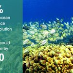 RT @BBCNews: Whats the impact of rising ocean acidity levels? http://t.co/JR2JMY3GGm #BBCGoFigure http://t.co/Iy2HQr0xqB
