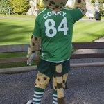 MT @TomasTyner: @CorkyTheCheetah was here earlier @CorkCityFC #greenfriday @UCC friendly chap :-) Up City http://t.co/fA7lnxErRh
