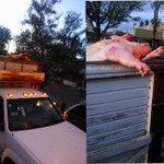 RT @stigmatizado: @EnGuadalajara @AytoGDL @MovilidadJal @Trafico_ZMG esta camioneta literal, va con las lonjas de fuera jajajaajaja ;) http://t.co/DqparjbFCI