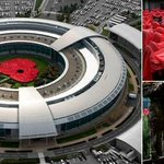 RT @Independent: Giant human poppy formed by more than 1,000 spies at GCHQ http://t.co/PoV2Z6PYRw http://t.co/dknoP8upc2