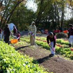 Massachusetts is a leader in nationwide #FoodDay2014 events http://t.co/az44SOOHvm http://t.co/wf5vAiIJlU