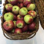 Come grab some apples at #interopIT #umass #ummsinteropit #UMassMed http://t.co/Ayq4ZL2MDe