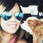 RT @keyetv: Nurse Nina Pham to be released from hospital today after being declared Ebola-free. http://t.co/Rl3I22gbGX http://t.co/Eryk4liveN