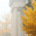 RT @uiowa: Fall fog on the Pentacrest. http://t.co/YqOqcOIPaz