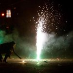 RT @ibnlive: Delhi fire department gets 293 calls on Diwali http://t.co/AuoqPxI4SR http://t.co/h2vwJeFOfQ