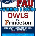 """RT @Rae_Rod: #GoOwls""""@fauswimdive: Come see FAU Swim & Dive vs. Princeton tomorrow at 10:00am at the FAU Aquatic Center! Go Owls! http://t.co/5hYTzXlGYD"""""""
