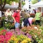RT @lakelandgov: 30th Annual Munn Park Garden Extravaganza - Tomorrow from 9 AM – 3 PM / Munn Park in @DowntownLkld #lkld http://t.co/xGTReCbw8I