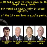 #AskNigelFarage do UKIP hate elephants or just really love ivory? http://t.co/r13yMCZgEW
