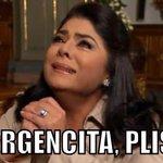 """@PindaroAA: Que ganen los Gallos..... http://t.co/U7pLEhuXhK"""