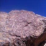 RT @nairayatiri: Petroglifos/sector Calloco/Parca/Pozo Almonte Al interior de #iquique http://t.co/Wyk9oydZV7