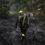 RT @biobio: Activan nueva Alerta Roja en Valparaíso por incendio forestal en sector Fundo El Llano http://t.co/PouMiyG4Ql http://t.co/OdMByI8rYS