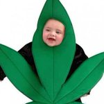 RT @SFGate: Calif. costume company releases pot leaf #Halloween costume for babies 0 to 6 months. http://t.co/oixxTFZZ60 http://t.co/XhJesQBKHh