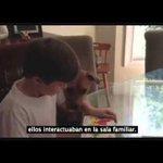 Perro rescatado es el nuevo mejor amigo de un niño con autismo http://t.co/QZxskxXlo4 #LaSerena #Coquimbo http://t.co/69bAstUUnD