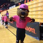 Out here cheering on @BeavsVolleyball and damming cancer! #GoBeavs #DamCancer http://t.co/h3nbRPiMeL
