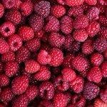 RT @24HorasTVN: Revelan los seis beneficios que otorga al cuerpo comer frambuesas. http://t.co/ok19jU4SGg http://t.co/HiTIG2rt1x