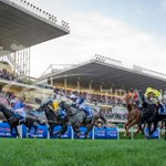 Incredible finish to the Cox Plate with Adelaide victorious @IREthoroughbred @ThirdDividend @CarnivalRSN http://t.co/QYmQosnqI3