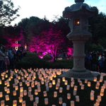 Beautiful night for the Canberra Nara Candle Festival #cbr http://t.co/KkzHnEnyJm