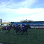 RT @Racing: Winner of the 2014 #CoxPlate is ADELAIDE!!! http://t.co/SNaJWpjatk