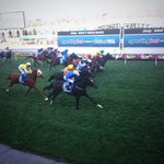Adelaide proves too strong in a blanket finish to the Cox Plate, Aidan OBrien gets his plate! http://t.co/QDztTFazaW