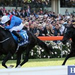 Adelaide WINS the 2014 Cox Plate #CoxPlate #TheValley @MVRC1 ridden by Ryan Moore for Aidan OBrien @superracing http://t.co/DqVJrlhtvf