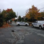Police presence in Cresthaven after reports of gun shots this morning from two different guns. #Halifax http://t.co/T44GdRo0Z6