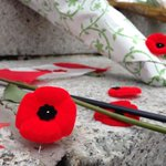 Poppies lay at the cenotaph, honouring Cpl Cirillo and Warrant Officer Vincent. @globalhalifax #halifax #ottawa http://t.co/IstLeErFMr