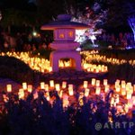 The displays are absolutely spectacular here at the Nara Candle Festival. Another classic #cbr event. http://t.co/uPC3LLZXHG