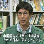 中国で密漁したら捕まるケド、日本なら警告されてオワリだと思って舐められてるなコレ。 #nhk http://t.co/YzsyGxcREB