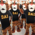 Keep an eye out for the Dal Tiger(s) today! Share your pics & include the hashtag #DalOpenHouse for a chance to win! http://t.co/fl9wATuM4p